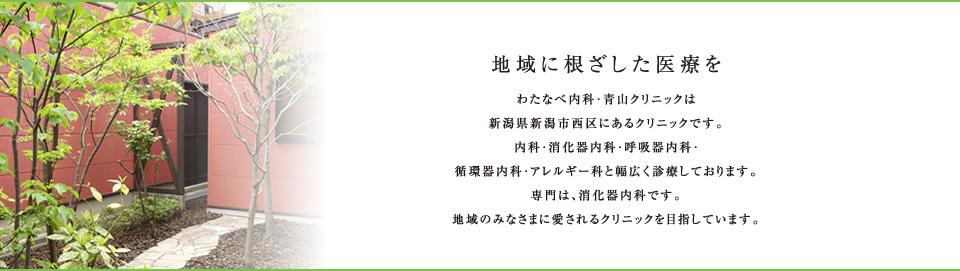 わたなべ内科・青山クリニックは新潟県西区にあるクリニックです。内科・消化器内科・呼吸器内科・循環器内科・アレルギー科と幅広く診療しております。地域のみなさまに愛されるクリニックを目指しています。